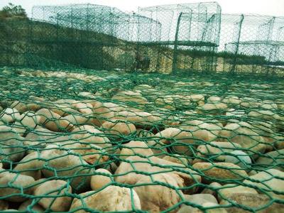 覆塑石笼网